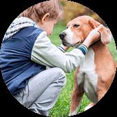 Адаптация детей к взаимодействию с собаками